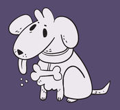 White Dog in Purple Background Stock Photography