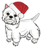 White dog in red hat Royalty Free Stock Image
