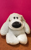 White dog toy Stock Images