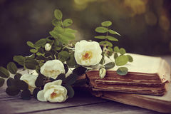 White dogrose on the open books on a table royalty free stock photo