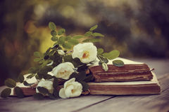 White dogrose and open books on a table royalty free stock photography