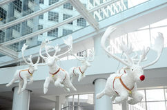 White doll reindeer. For christmas Stock Photography