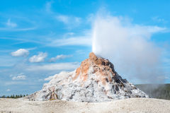 The White Dome Geyser Yellowstone National Park. The White Dome Geyser erupting in Yellowstone National Park Royalty Free Stock Photo