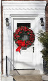 White door with Christmas decorations Stock Photography