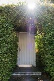 White door of the enchanted forest lost in the bushes stock image