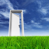 White door in grass with sky background Royalty Free Stock Photos