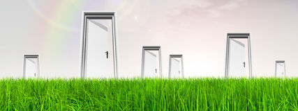 White door in grass with sky background Stock Images
