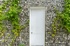White door on the stone wall Royalty Free Stock Photo