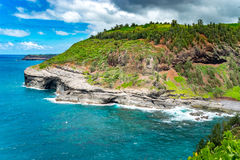 The white dots are birds. This is at Kilauea Point on Kauai, a bird sanctuary Stock Image