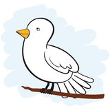 White Dove. Cute white dove cartoon character sitting on a branch looking upwards Royalty Free Stock Images