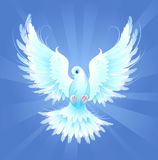 White dove. White, artistically painted, flying dove on a blue radiant background vector illustration