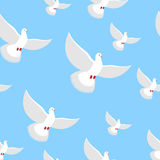 White Dove blue sky seamless pattern. Flying in air white beauti Stock Photo