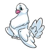 White dove cartoon illustration Royalty Free Stock Images