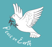 White Dove In Flight Holding An Olive Branch On Blue Background And With Text Peace On Earth. Stock Photography