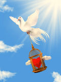 A white dove helping loving heart. 3d illustration of the sunny day and white dove Royalty Free Stock Images
