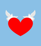 White Dove holds heart. Two white bird is symbol of purity. Red Stock Photography