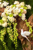 White Dove on Paper Tree with White Flowers, Orchid and Leaves for Decoration Stock Photo