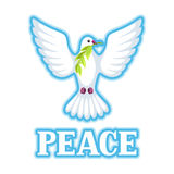 White dove of peace bears olive branch Royalty Free Stock Photo