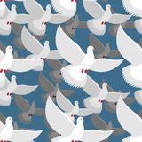 White Dove seamless pattern. flock of white doves in blue sky. T Royalty Free Stock Photography
