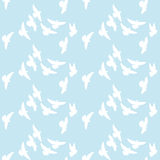White dove vector Royalty Free Stock Photos