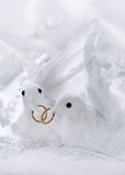 White doves. With wedding rings stock image