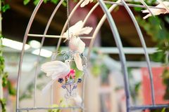 White doves holding golden rings in their beaks Royalty Free Stock Photos