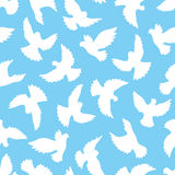 White doves seamless pattern on a blue background. Royalty Free Stock Photo