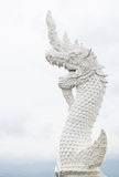 White dragon Royalty Free Stock Images
