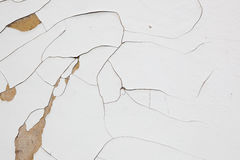 White dried paint texture Stock Images