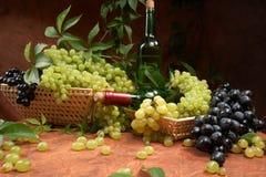 White dry wine Royalty Free Stock Photos