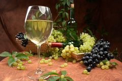 White dry wine Stock Photos