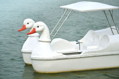 White duck boat in lake. Stock Images