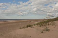 White dune near Riga, Latvia Stock Photos