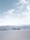 White dunes Stock Photo