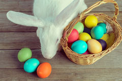 White Easter bunny with basket Royalty Free Stock Photos