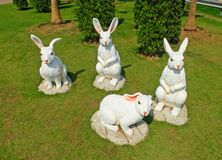 White Easter Bunny Gangs on The Ground Stock Images