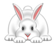 White Easter Bunny Isolated White Background Royalty Free Stock Images