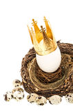 White easter egg with golden crown decoration. In nest isolated on white background Royalty Free Stock Photo