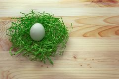 White egg in green nest Stock Images