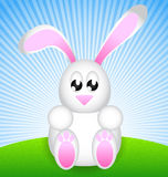 White Easter Rabbit. Sitting on green meadow Royalty Free Stock Photography