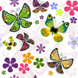 White effortless floral pattern. With vivid butterflies Royalty Free Stock Photography