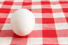 White egg Royalty Free Stock Photography