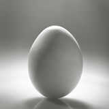 White egg Royalty Free Stock Photo