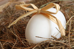 White egg with bow on straw Stock Photo