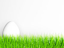 White egg on the grass, Royalty Free Stock Image