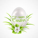 White egg on the grass Stock Images