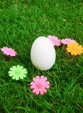 White egg. On the green grass Stock Image