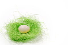 White egg in a green nest Stock Photos