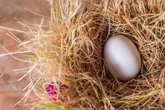 White egg in the hay Royalty Free Stock Photography