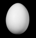 White egg isolated Stock Images